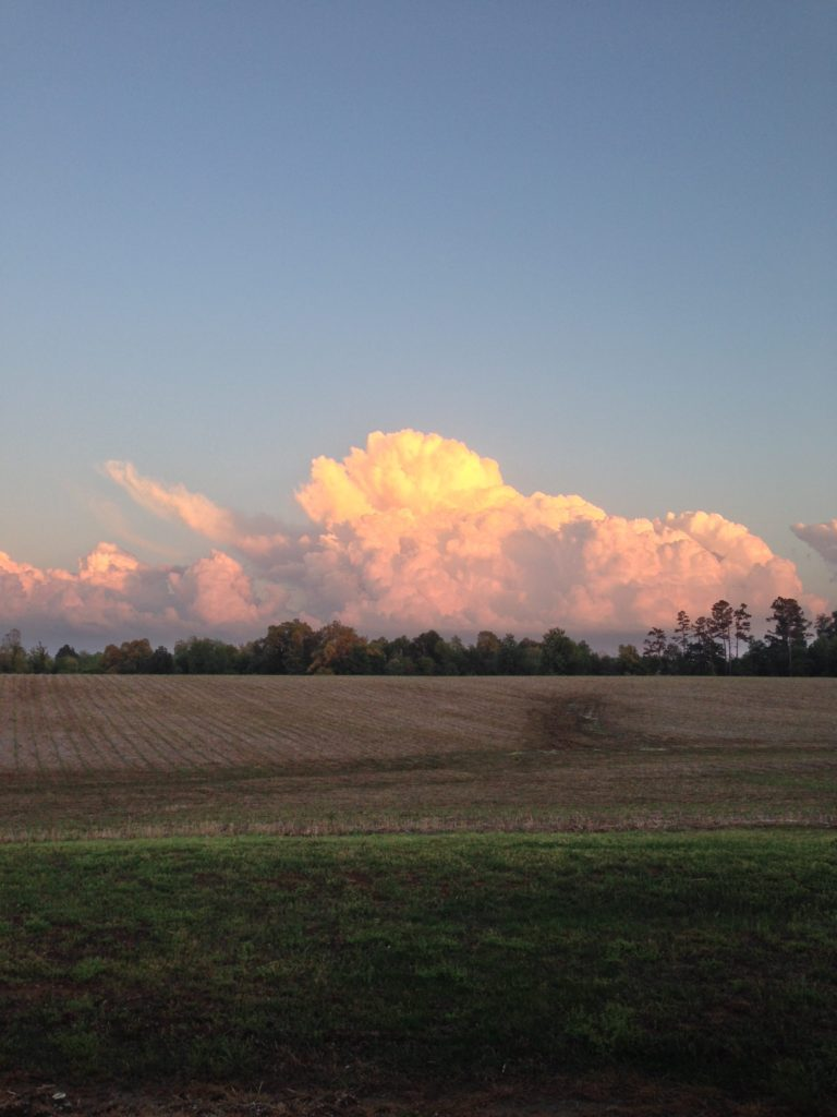 These stunning clouds showed up in view from outside my church a few weeks ago. Sometimes I can't get over the beauty of nature.