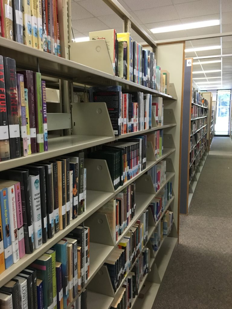 The public library has resources for nearly every issue, stage or celebration in life. Sometimes its just fun to get lost in the wonder of the titles.